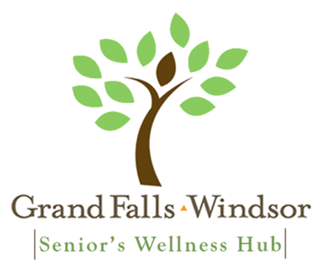 Seniors Wellness logo